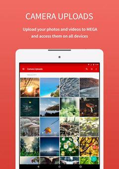 طريقة امتلاك حساب على تطبيق ميجا Mega